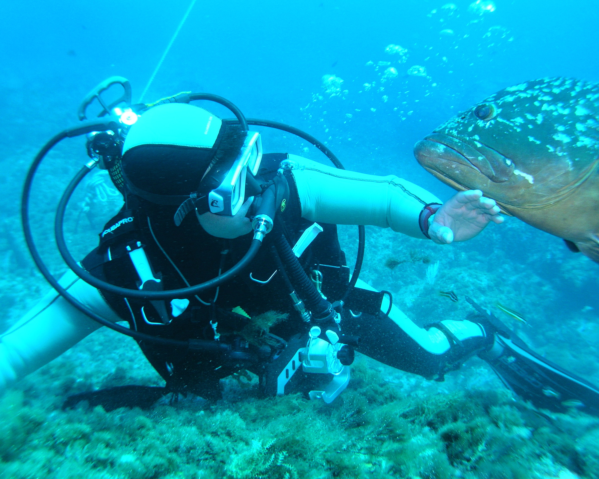 Marbella Design Academy - Enjoy with Water Sports - Scuba Diving